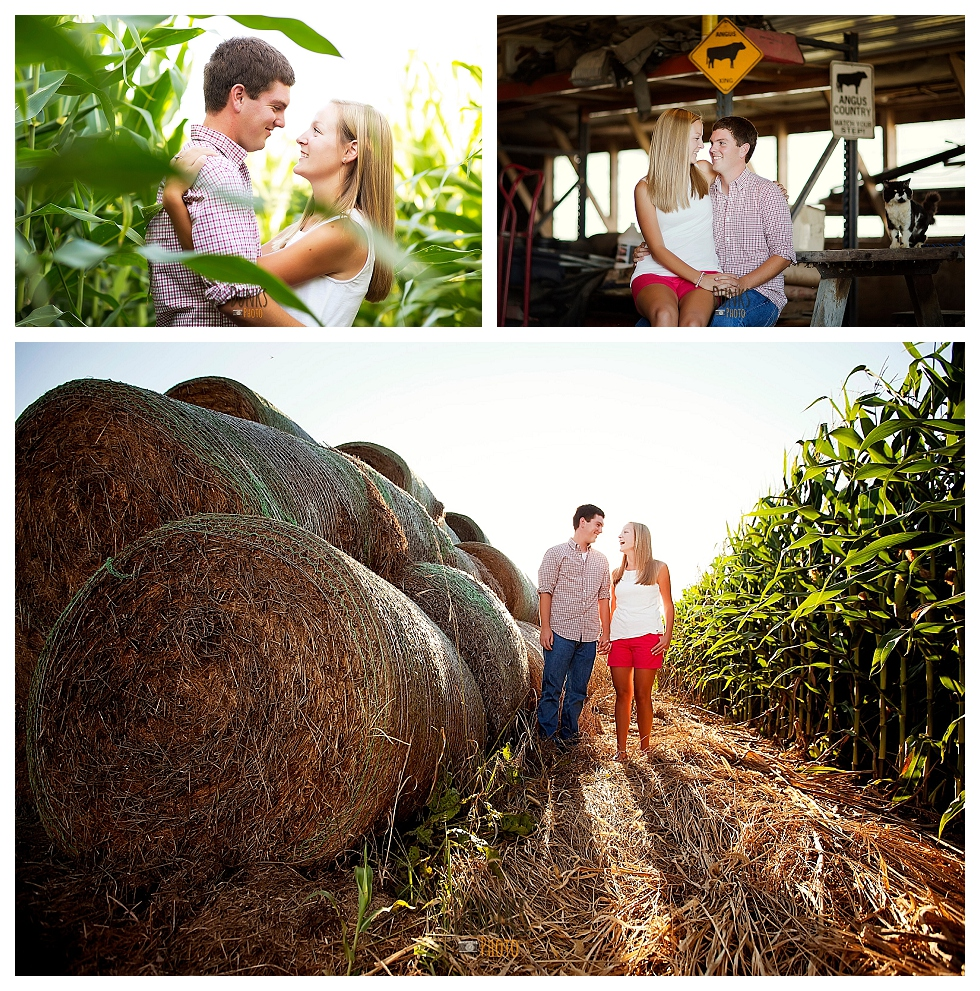 eastern shore engagement session (3)