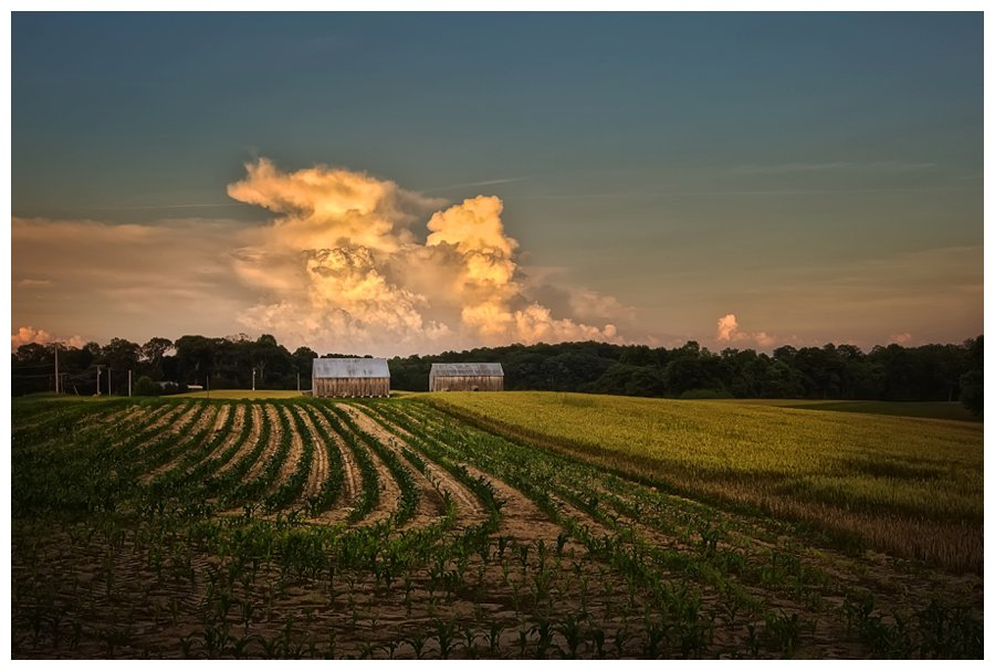 Barns Of Calvert County Photo A Day Project May Dunks
